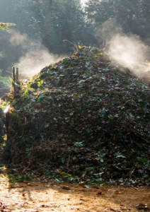 Composting: Turning Garbage Into Gold